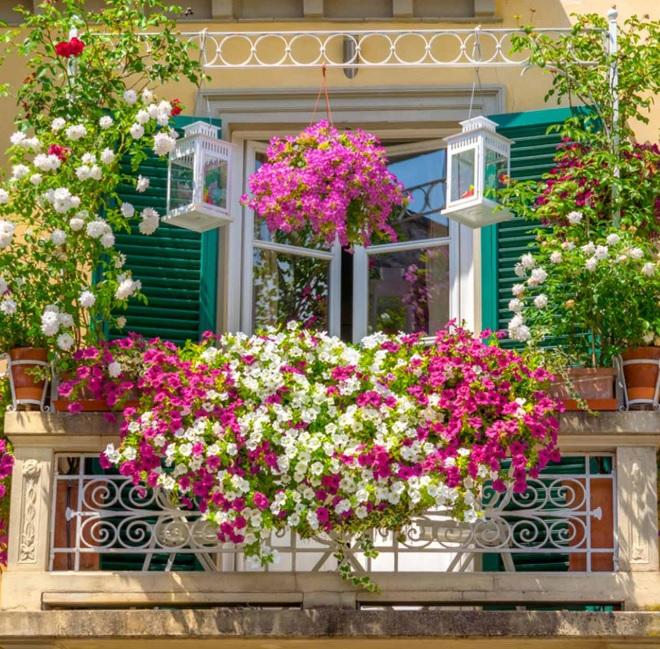 Çiçeklerle Süslenmiş Balkon Dekorasyonu