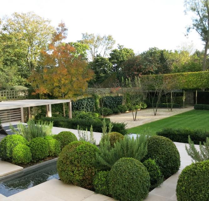 Geniş Modern bahçe dekorasyonu